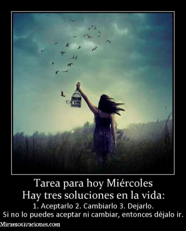 157404_tarea-para-hoy-miercoles-hay-tres-soluciones-en-la-vida (1)