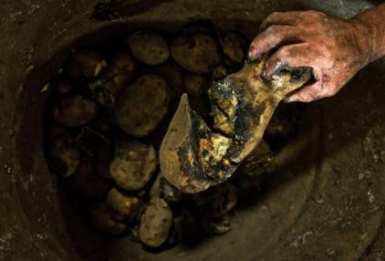 trabajador-separa-podridas-alimentacion-Cavasa_MILIMA20130824_0161_8